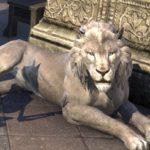 ライオンさんかわいい