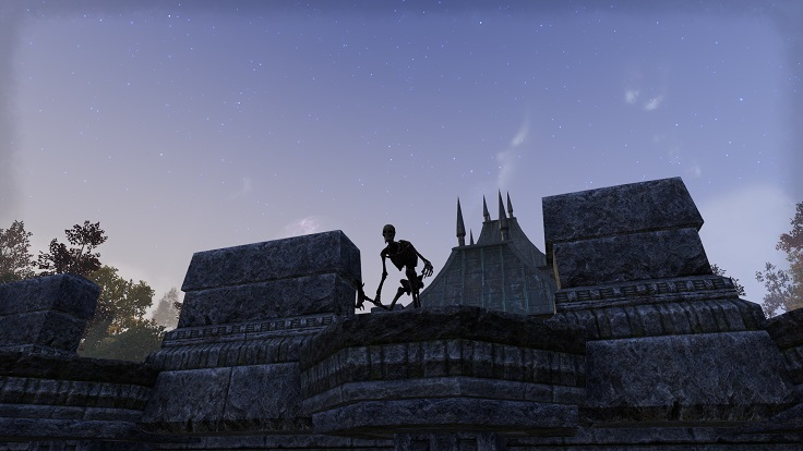 a skeleton in Cyrodiil