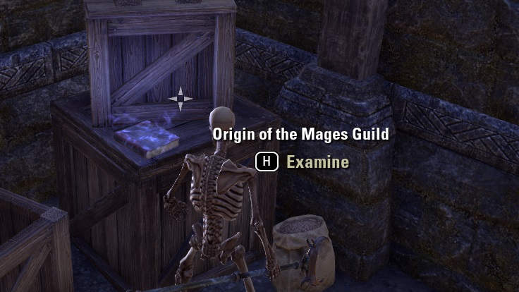 伝説の書物゛Origin of the Mages Guild""