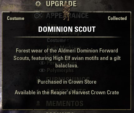 Dominion Scout Costume