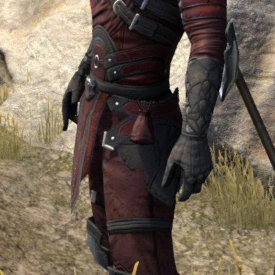 Thieves Guild Leathers