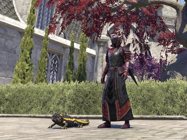 POCKET SALAMANDER PET, COURT OF BEDLAM COSTUME