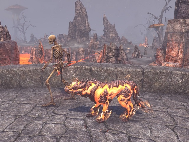 TWITCH DROP-FLAME ATRONACH WOLF PET-