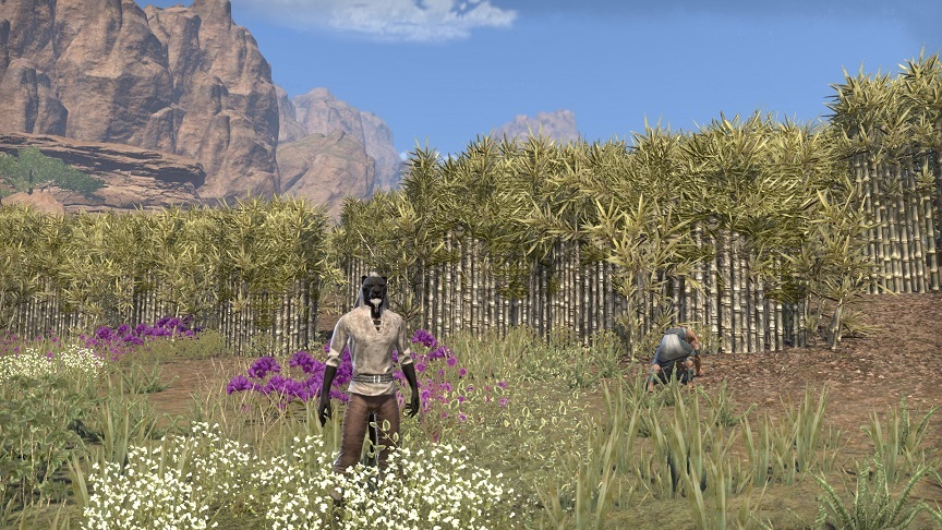 Merryvale Farms (Elsweyr, ESO)